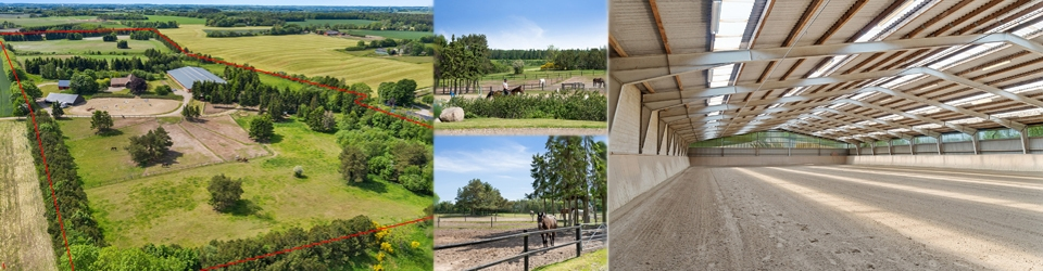 Hesteejendom 12 ha - stor ridehal - Østjylland